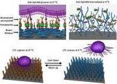 New technology allows scientists to capture and preserve cancer cells ... - EurekAlert (press release) | Media Technology and my future | Scoop.it