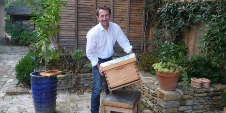Pyrénées-Atlantiques : des ruches connectées pour surveiller les abeilles | La veille techno de Tookle | Scoop.it
