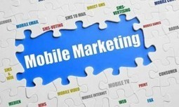 Infographic: What's Driving Mobile Marketing in 2014? | Mobile ... | Small Business Online Marketing | Scoop.it