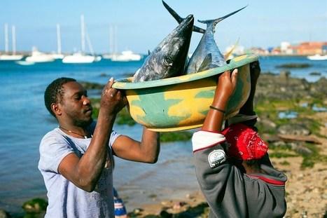 Kokemuksia Kap Verden Boa Vistasta?   Focus on Fashion   kanarian matka viikolla 9   Scoop.it