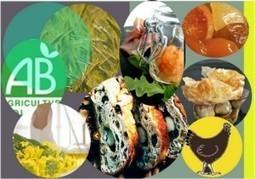 Place à la création et à l'innovation sans frontières côté agroalimentaire - PresseLib | Concours national de la création agroalimentaire Bio | Scoop.it