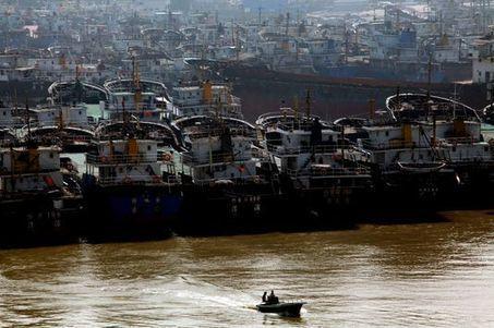 Comment la pêche chinoise pille les océans de la planète | MDV 2014 | Scoop.it
