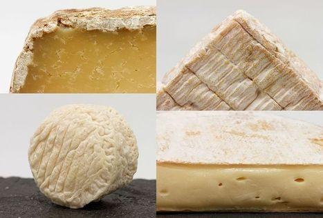Les wikipédiens en font tout un fromage - Libération   Culture & Wikipédia   Scoop.it