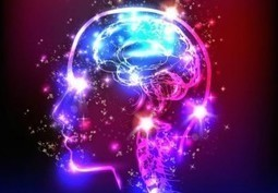 The Brain Does NOT Create Consciousness | Conscience et champ - Field and consciousness | Scoop.it