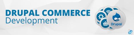 Drupal Commerce Development Services and Solutions | Web Development & eCommerce Solutions | Scoop.it