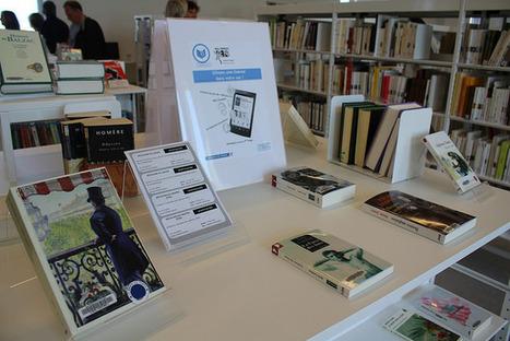 Les bibliothèques et les archives, grandes perdantes des lois création et numérique ? | Trucs de bibliothécaires | Scoop.it