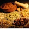 Basic Herbalism: The Use of Medicinal Herbs | Herbalism | Scoop.it