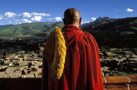 One Very Wise Insight From The Dalai Lama | Sustain Our Earth | Scoop.it
