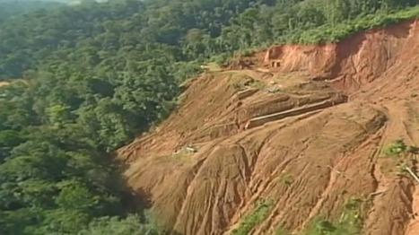 Le plateau des Guyanes gravement menacé par la déforestation - guyane 1ère   Guyane : alertes mine d'or Nationale   Scoop.it