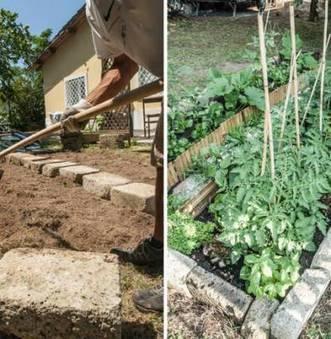 Prodotti biologici sul terrazzo di casa, la ricetta di Orto Genuino | Coltivare l'orto | Scoop.it
