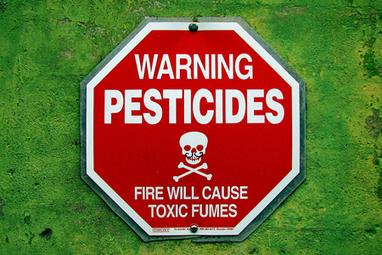 Danger des pesticides: on a vérifié les salades des fabricants | Toxique, soyons vigilant ! | Scoop.it