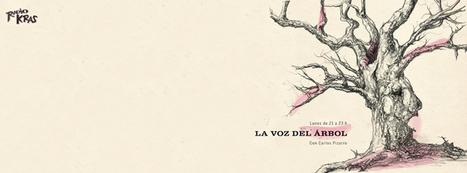 La voz del árbol   Carlos Pizarro   Jazz en Asturias: La voz del árbol 13/05/2013   Jazz asturiano con Miguel Uria   Actualidad del Jazz en Asturias   Scoop.it