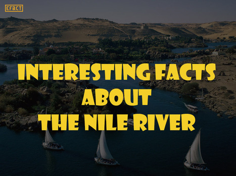 Facts about the Nile River - Interesting Facts   EFACT   Scoop.it