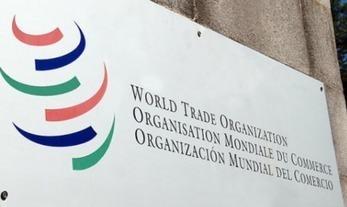 Conozca la renovada participación de las economías pequeñas y vulnerables en la OMC   Un poco del mundo para Colombia   Scoop.it