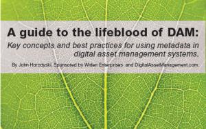 A guide to the lifeblood of Digital Asset Management | Dam Foundation | digitalassetman | Scoop.it
