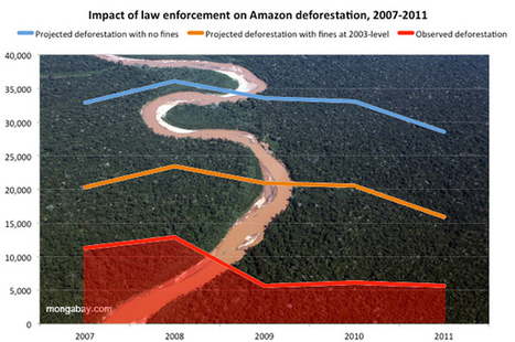 Brazil's satellite monitoring reduced Amazon deforestation by 60,000 sq km in 5 years   The Glory of the Garden   Scoop.it