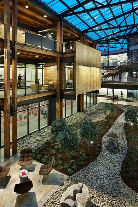 What Google knows about greener offices | ReConnecting to Nature | Scoop.it