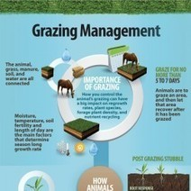 Grazing & Farm Facility Management | Visual.ly | Sports facility Managment. 4406190 | Scoop.it