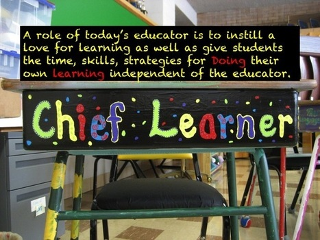 Educator as Model Learner | Teaching in Higher Education | Scoop.it