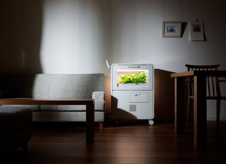 「家庭用植物工場」で食材も自宅でつくる時代へ «  WIRED.jp | PlantFactory | Scoop.it