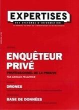 Profil du fraudeur en entreprise selon KPMG … | Le blog de l'information stratégique | digitalcuration | Scoop.it