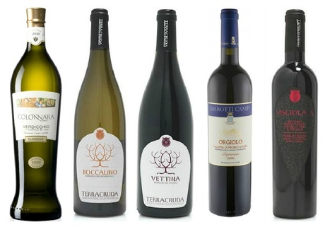 5 Wines from Le Marche, The east coast of Italy   Wines and People   Scoop.it