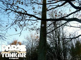 Collage à Rennes #6 // décembre 2012 | The art of Tarek | Scoop.it