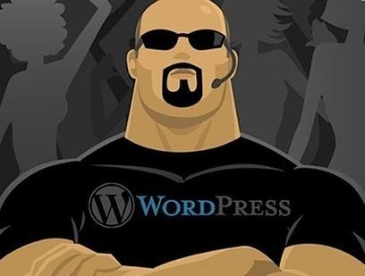 WordPress Plugins to Avoid Blog Copy | Tech | Scoop.it