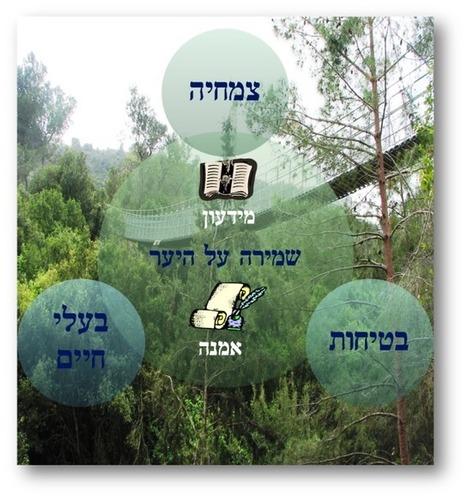 שמירה על היער - דף הבית | יסודי- דוגמאות לפעילויות מתוקשבות | Scoop.it