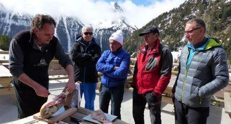 Le porc noir de Bigorre attend une double appellation | Vallée d'Aure - Pyrénées | Scoop.it