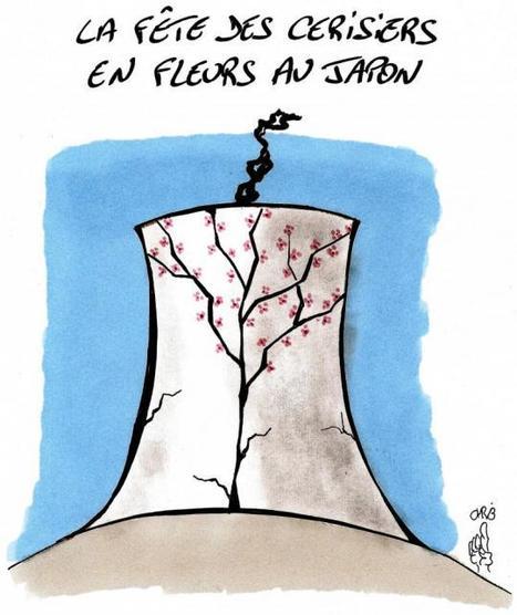 Japon : cerisiers en berne | LePost.fr | Japon : séisme, tsunami & conséquences | Scoop.it
