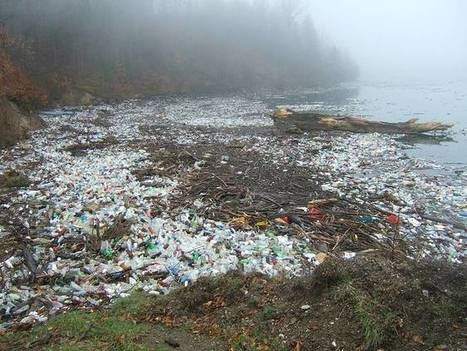 "The big awful truth about biodegradable plastics (""this is not a good substitute; still ocean litter"") 