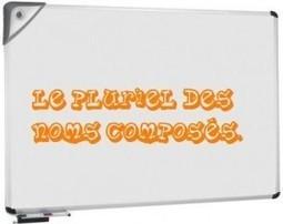 Le pluriel des noms composés   Bonjour du Monde - FLE   Scoop.it
