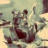 Lola Tiger