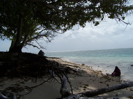 Climate Change Poses Security Threat To Islands   Climate change challenges   Scoop.it