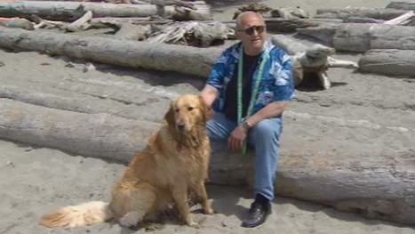 Walk the dog, pet the cat — it's good for your heart - Ottawa - CBC News | Laws for Paws | Scoop.it