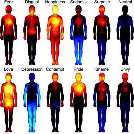 Study: body mapping reveals emotions are felt in the same way across cultures | Innovate Retail & new ideas around | Scoop.it