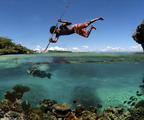 Most popular photography on StumbleUpon! | Evolution et développement | Scoop.it