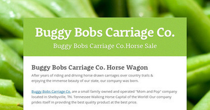 Buggy Bobs Carriage Co. | horse buggies | Scoop.it
