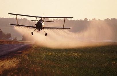 Bio contre OGM : les paysans contre l'industrie | Des 4 coins du monde | Scoop.it