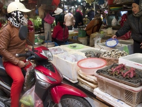 Project for Public Spaces | The Trouble with Modernization: Lessons for Endangered Markets Everywhere | Urban Choreography | Scoop.it