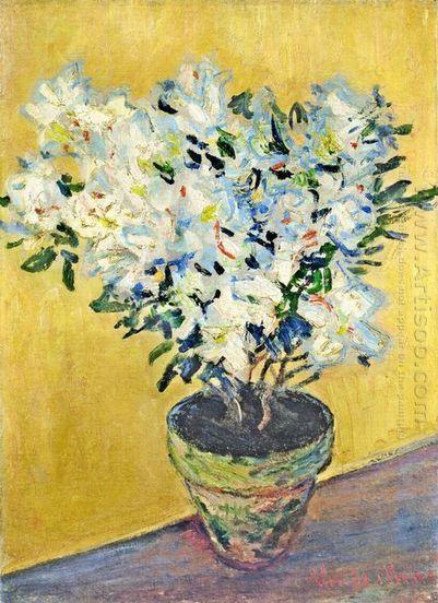 Azalées blanches dans un pot 1885 - Peinture à l'huile | famous paintings gallery | Scoop.it