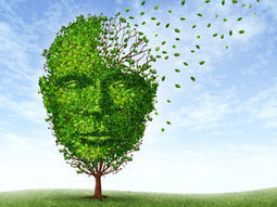Early Alzheimer's diagnosis compound | Chemistry World | Science and Other Wild Affairs | Scoop.it