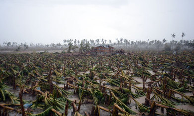 Filipino super-typhoon an ominous warning of climate change impact | Sustain Our Earth | Scoop.it