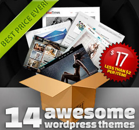 14 Business and Portfolio WordPress Themes - only $17! - MightyDeals | Wordpress themes plugin tips | Scoop.it