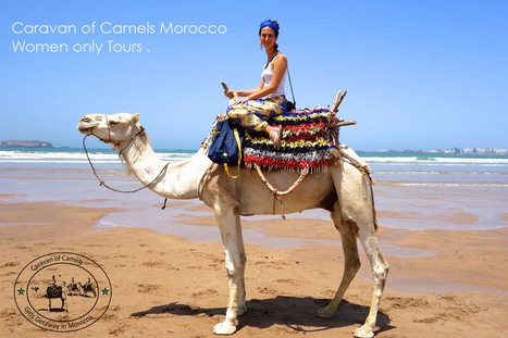 Morocco Women Only Tours - Small Groups of Girls Sightseeing – Tours – Excursions & Day Trips Morocco  Solo Female Travelling in Morocco - Morocco Women Only Private Sightseeing – Tours  Casablanca...   Morocco Travel with Local   www.glampingmorocco.com   Scoop.it