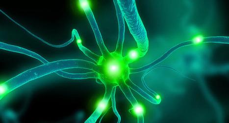 Can Training Help Aging Brains? « Inside Health News | Sport# Learn#Science | Scoop.it