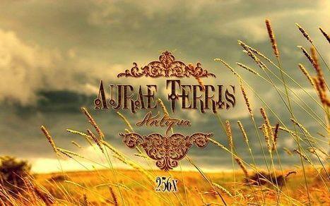 Aurae Terris Texture Pack 1.6.2 | Aurae Terris Texture pack | Scoop.it