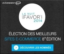 Rapport d'activité 2013/2014 - FEVAD   Best of E-commerce   Scoop.it