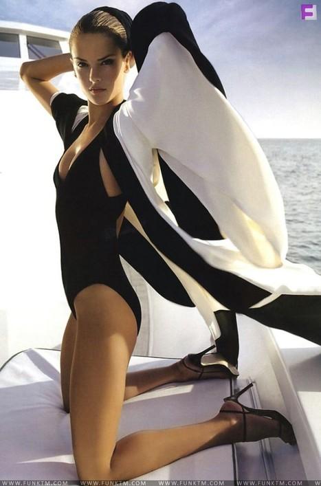 Super Sexy Hollywood Celebrities (12 Pics) | CELEBRITY GOSSIP CHANNEL | Scoop.it